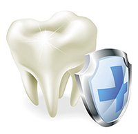 tooth with shield protection